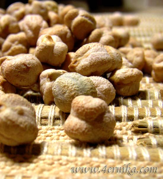 pro nut